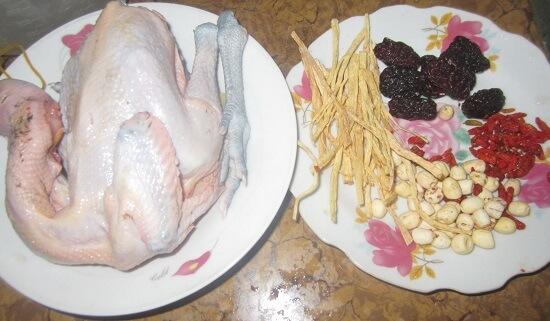 Cách làm gà tần hạt sen, Cách làm gà tần hạt sen thuốc Bắc bổ dưỡng