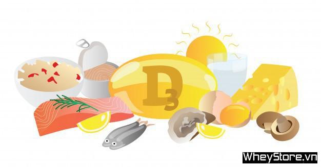 Vitamin D3 có tác dụng gì? Cách bổ sung vitamin D3 hiệu quả - Ảnh 1