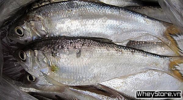 Top 15 thực phẩm giàu omega 3 cho cơ thể khỏe mạnh - Ảnh 4